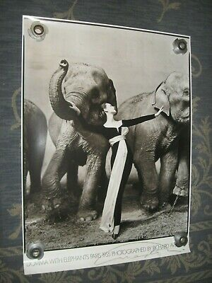 $295 • Buy Original Hand Signed Richard Avedon  Dovima With Elephant Paris 1955 27 3/8 X 37