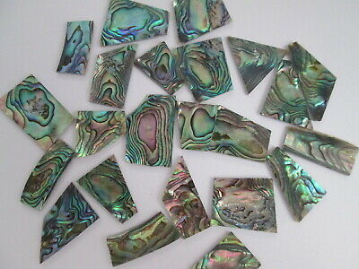 1oz Green Paua Abalone Shell Blanks,.060  Thickness.13-18 Inlay Material Pieces  • 18.18£