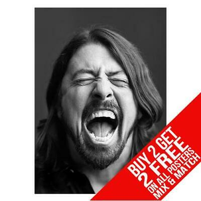 Dave Grohl Foo Fighters Bb1 Poster Art Print A4 A3 Size Buy 2 Get Any 2 Free • 6.99£