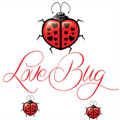 £8.99 • Buy Love Bug Flavour Concentrate