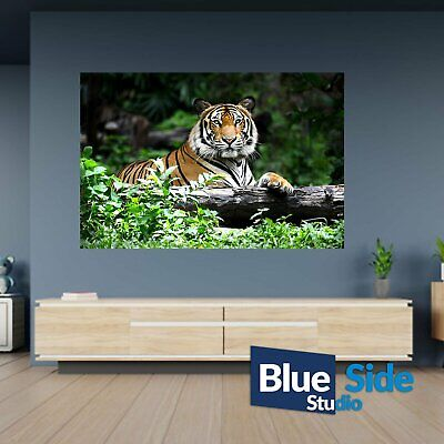 Tiger In Nature Field Poster Self Adhesive Wall Sticker Art Decal Mural • 17.99£