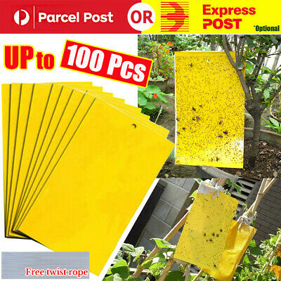 AU12.96 • Buy Up 100x Yellow Sticky Glue Paper Insect Trap Catcher Killer Fly Aphids Wasp Lot