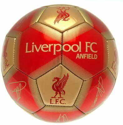 Liverpool FC Football Team Ball Printed Signatures Signed Size 5 New • 12.99£