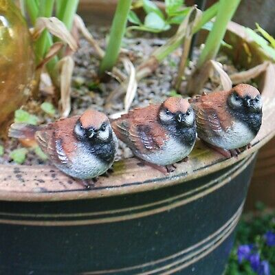 £12.99 • Buy Set Of 3 Pot Topping Sparrow Bird Garden Ornaments