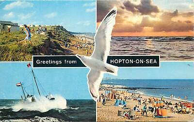 UK England Postcard Hopton-on-Sea Different Aspects Seagull • 2.50£