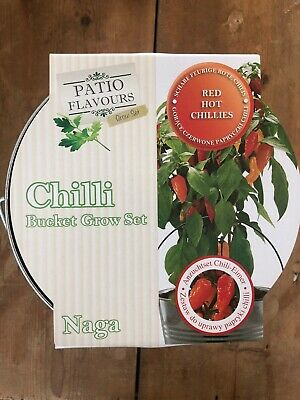 Chilli Naga Kit Home Grow Your Own Gift Full Instructions Sold For AGE UK • 7.75£