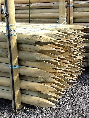 £30.95 • Buy  TREE STAKE 3 OF 1.5m X 50mm MACHINE ROUND POINTED GARDEN TIMBER FENCE POST