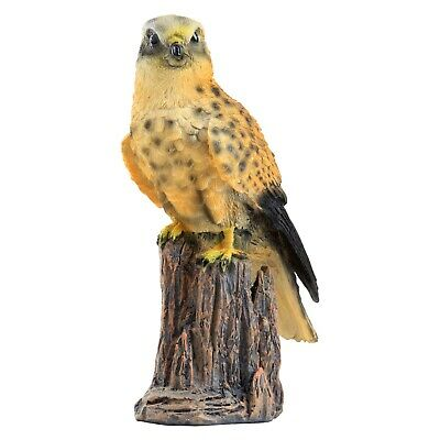 £14.99 • Buy Realistic Kestrel Bird Garden Animal Ornament Outdoor Statue 22cm