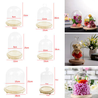 £9.54 • Buy 6 Sizes Decorative Glass Dome With Wooden Base Cloche Bell Jar DIY Display Stand