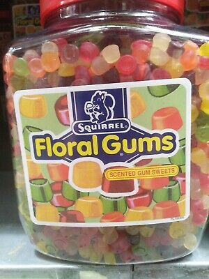 Squirrel Floral Gums 2.25kg  Tracked Delivery • 18.95£