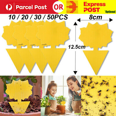 AU6.65 • Buy 10/20/30/50x Dual Sided Sticky Trap Insect Killer Whitefly Thrip Fruit Fly Gnat