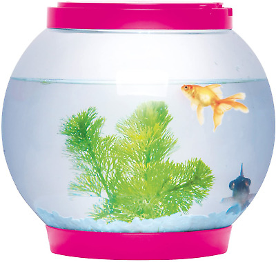 Sentik® 5 Litre Glass Fish Bowl LED Light Aquarium Goldfish Betta Tank Pink • 21.31£