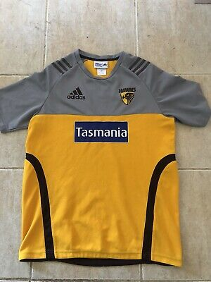 AU48.99 • Buy Hawthorn Hawks Players Warm Up Run Out Training Top Made By Adidas