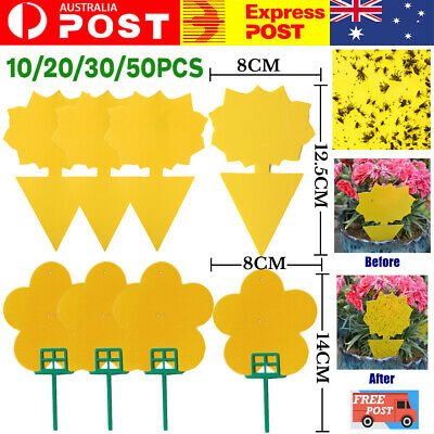 AU14.95 • Buy 10/20/30/50PC Dual Sided Sticky Trap Insect Killer Whitefly Thrip Fruit Fly Gnat