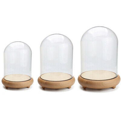 £10.74 • Buy Glass Display Cloche Dome Bell Jar With Wooden Base Flower Toys Decorative Vase