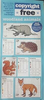CHARTS ONLY Simple Cross Stitch Card Designs Of Woodland Animals & Flowers • 0.99£