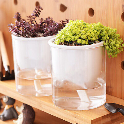 Accessories Plant Pots Nursery Pot Home Decor Water-Saving Supplies Practical • 4.55£