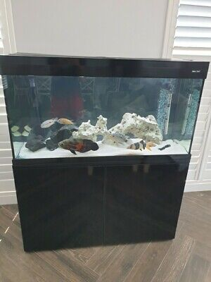 AU1700 • Buy 4 Ft Fish Tank With Stand And Lid Aqua One Brilliance 120