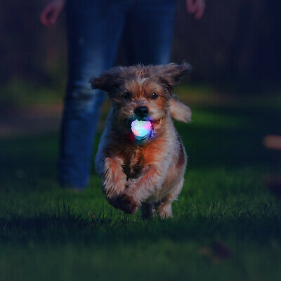 £11.99 • Buy Ultra LED Dog Ball Toy Light Up Pet Flashing Toys Throw Ball Bounce Interactive