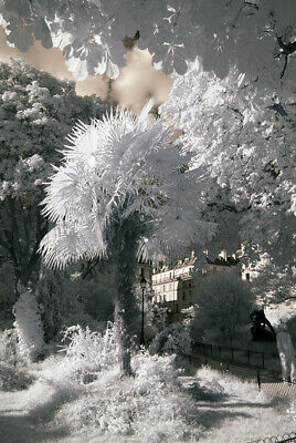 Infrared IR720nm Converted Sony A7 Camera Body • 639£