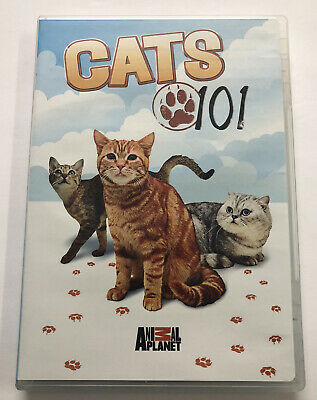 £30.52 • Buy Cats 101 (DVD) Animal Planet - Tested! Free Shipping!