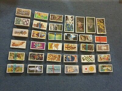Large Collection Of Cigarette/Tea Cards - Brooke Bond/Grandee Etc ~1,500 Cards • 19.99£