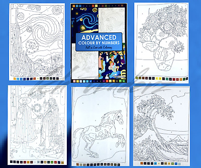 Colouring Book Advanced Colour By Numbers Adult Colouring Book Relaxing Activity • 3.99£