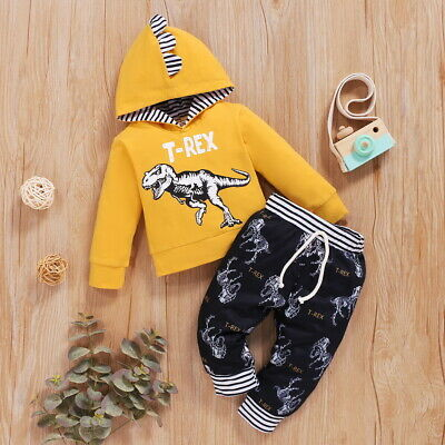 £9.79 • Buy 2Pcs Kids Toddler Boys Dinosaur Hooded Tops+Pants Clothes Set Tracksuit Outfits