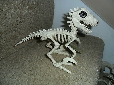 $ CDN19.93 • Buy Creepy Skeleton Props For Halloween Party Decorations Animal Dinosaur Raptor 7