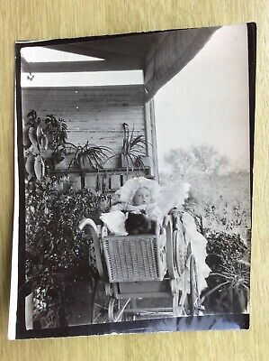 £8.95 • Buy Old Photograph: BABY In A Fancy WICKER PRAM With A CAT & A Frilly Bonnet (ref 7)