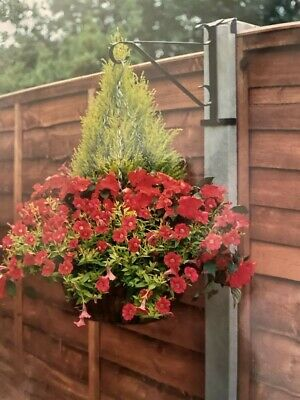 Garden Hanging Basket Brackets No Fixings Needed For A Concrete Fence Post X2.. • 10£