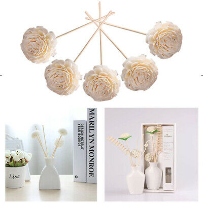 AU12.99 • Buy 5 Pcs Flower Head Oil Home Rattan Reed Essential Aroma Diffuser Sticks Practical