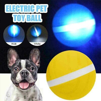 AU23.98 • Buy Pet Dog Cat Electric Magic Roller Ball Toy Automatic Motion Activate Rolling Hot