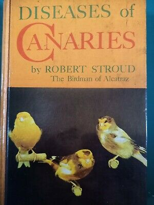 £60 • Buy Canary Book