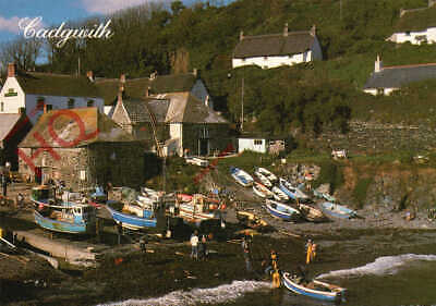 £3.49 • Buy Picture Postcard~ Cadgwith, Andrew Reekie