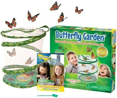 £25.89 • Buy Butterfly Insect Lore Garden Caterpillars Live Cup Habitat Original Cups Two UK