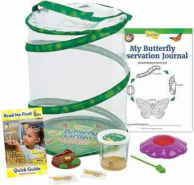 £31.83 • Buy Insect Lore Butterfly Garden Original Habitat Live Cup Of Caterpillars Butterfly