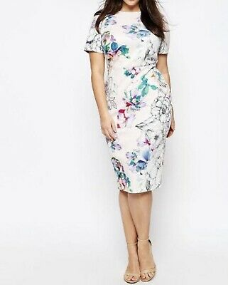 AU15 • Buy Asos Curve Pink Floral Scuba Dress AU 24