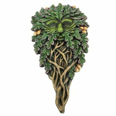 £14.99 • Buy Green Man Wall Plaque All Seeing Oak Man Of The Forest Wood Spirit Pagan