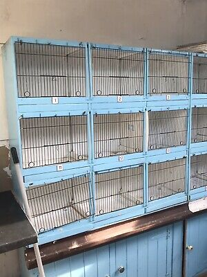 £65 • Buy Small Bird/ Canary  Breeding Cages Used But In Good Condition Block Of 9