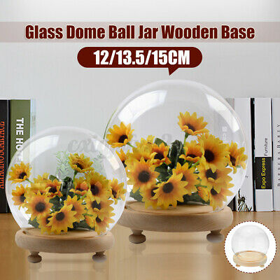 £10.58 • Buy 3 Sizes Decorative Glass Dome With Wooden Base Cloche Bell Jar DIY Display Stand