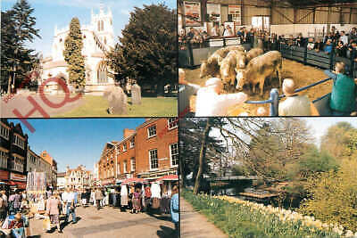£2.69 • Buy Picture Postcard_ Melton Mowbray (Multiview)