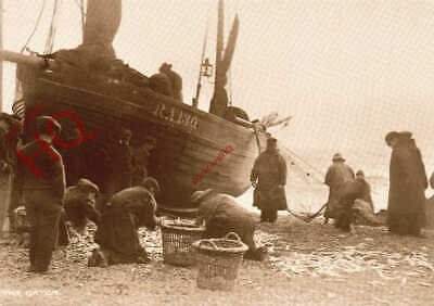 AU6.59 • Buy Picture Postcard:;FISHING BOAT, HASTINGS, C. 1910 (REPRO)