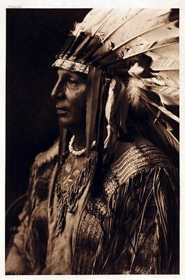 £3.99 • Buy Native American Indian Chief Portrait White Shield Photo Art Print Poster