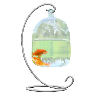 AU19.53 • Buy Fish Tank Bowl With Stand Decorative Ornaments Crystal Clear Hanging Glass Vase