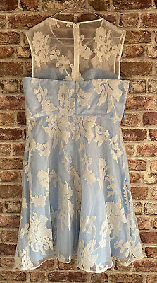 £25 • Buy Ariella Occasion Dress, Fit And Flare Lined Blue Cream Damask Dress Size 16 BNWT