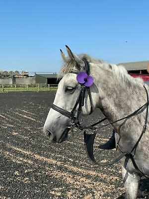 £1.75 • Buy Remembrance Purple Heavy Duty Felt Poppy Poppies For Large Animals Horses Collar