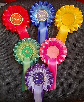 £6.30 • Buy 2 Tier Rosettes 1st - 6th Dog Show Event Child Different