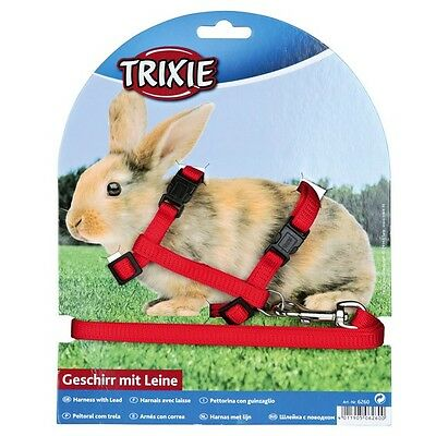 £6.50 • Buy Rabbit Harness And Lead, Various Colours. Snap Buckles(6260)