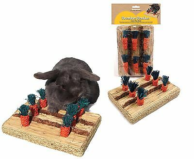£11.99 • Buy Rosewood Boredom Breaker Carrot Play Patch Rabbit Guinea Pig Hutch Cage Chew Toy